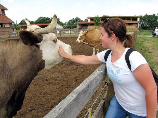 Krisna-völgy Tehénvédelmi Központ Szeretetel vár minden érdeklődőt :-)
